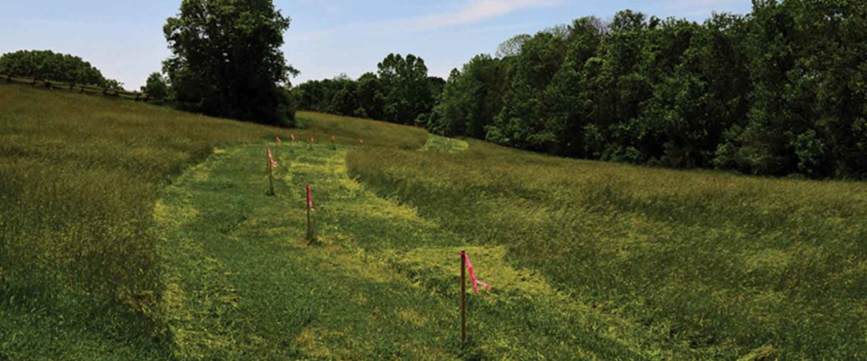 Markers are placed at increments along the future site of the Poplar Forest Parkway.